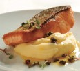 Altantic Salmon