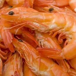 Count on 100 Islands Whole Cooked Prawns for quality